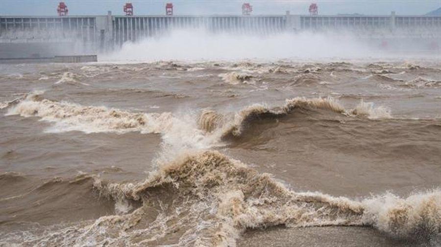 Nước sông Dương Tử giảm, Trung Quốc nếm trái đắng thủy điện