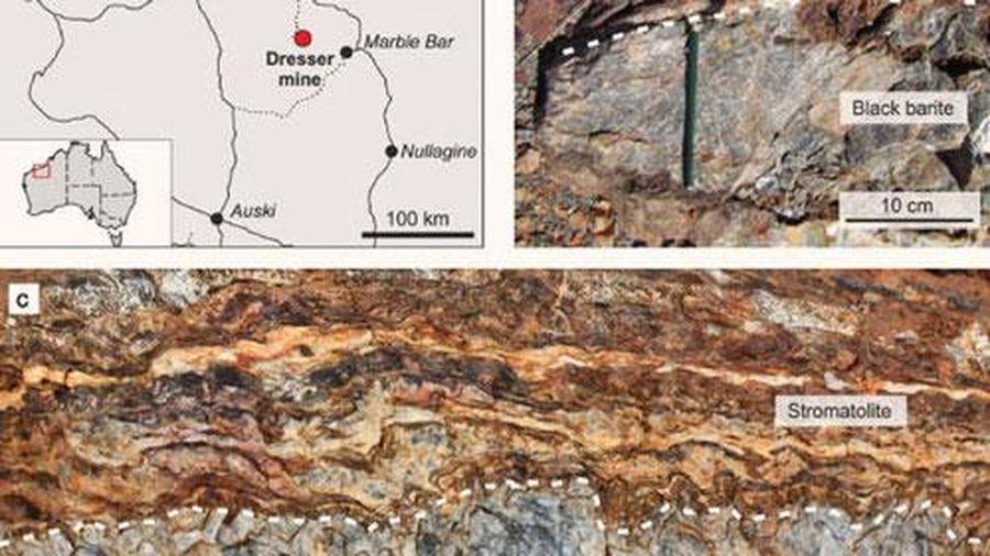 Đào mỏ đá, thấy thứ quý hơn vàng: 'nhà' của sinh vật cổ nhất Trái Đất
