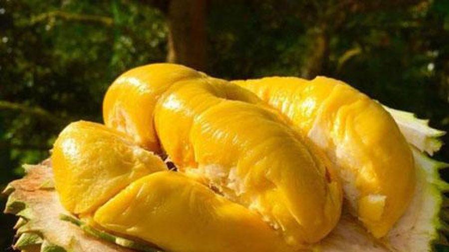 Những 'đại kỵ' khi ăn sầu riêng không phải ai cũng biết