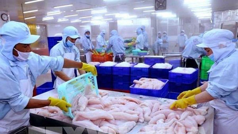 Xuất khẩu hàng hóa của Tp. Hồ Chí Minh tăng 25,1%