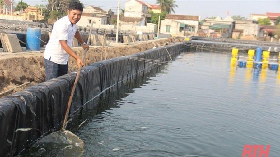 Bỏ mức lương cao, về quê nuôi 'tôm sạch'