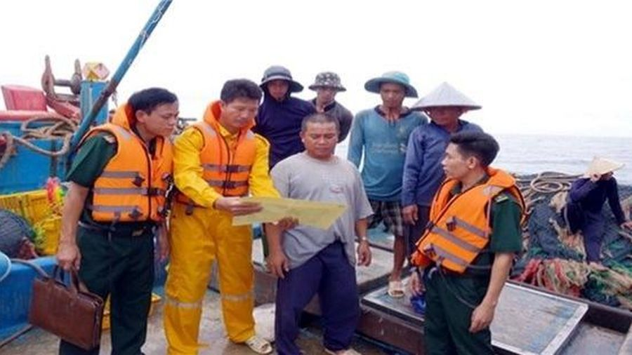 Bà Rịa - Vũng Tàu: Quyết liệt trong công tác xử lý tàu cá khai thác hải sản bất hợp pháp