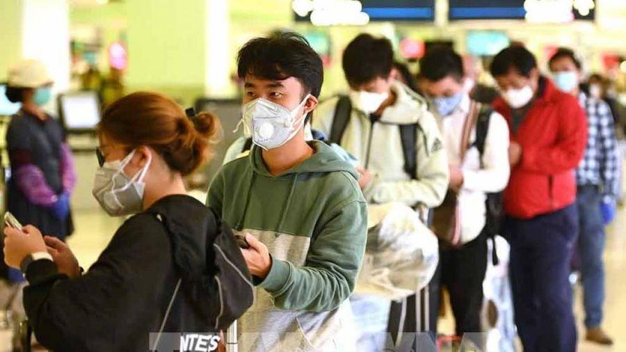 COVID-19 khiến con đường du học của nhiều du học sinh Việt Nam dang dở