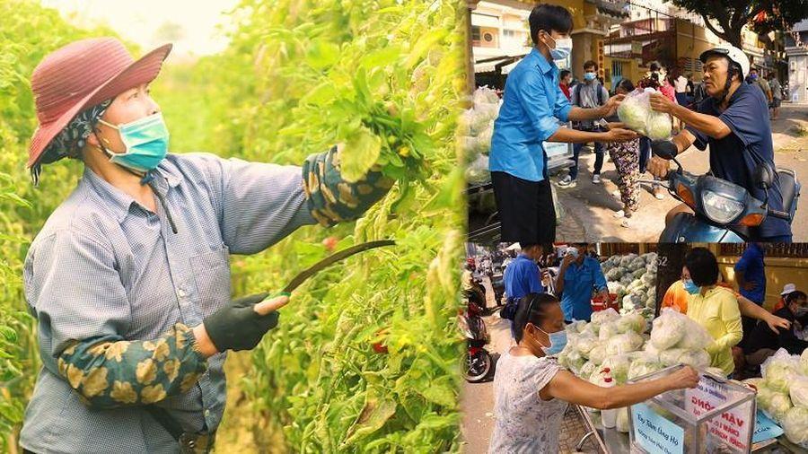 Người Sài Gòn cấp tập giải cứu nông sản vùng dịch