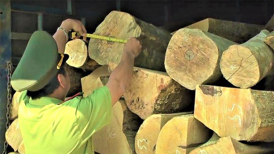 Bắt giữ xe tải chở hơn 4m3 gỗ trái phép