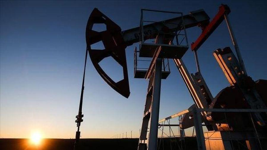 Số lượng giàn khoan dầu ở Mỹ tăng trong tuần kết thúc tháng Hai