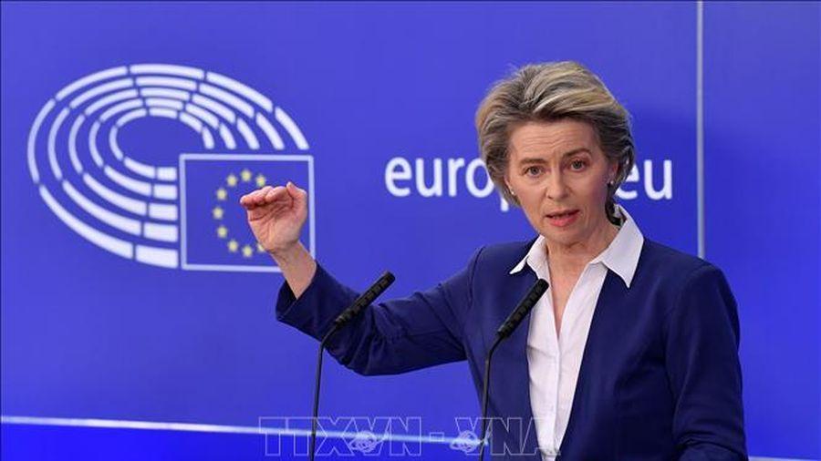 EU lên kế hoạch cung cấp 'giấy thông hành xanh' vaccine