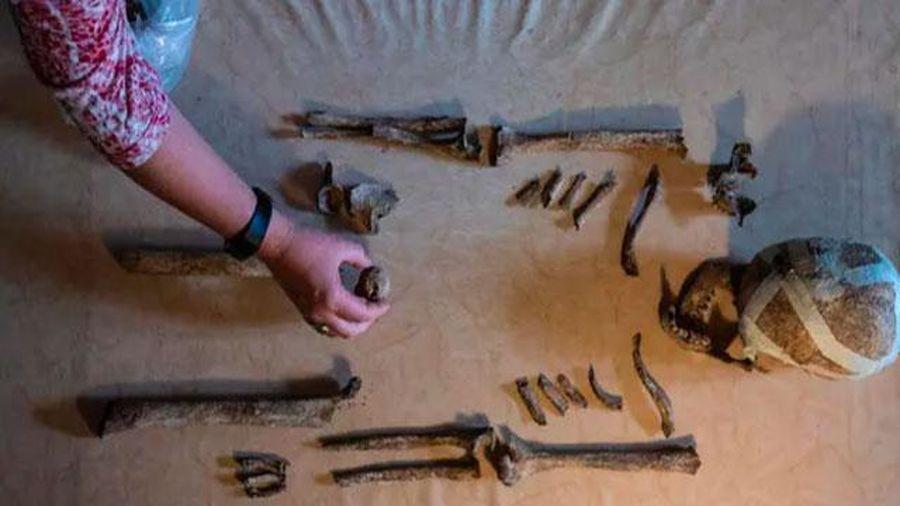 Bộ hài cốt 5.000 năm ở Đức hé lộ cuộc sống của người tiền sử