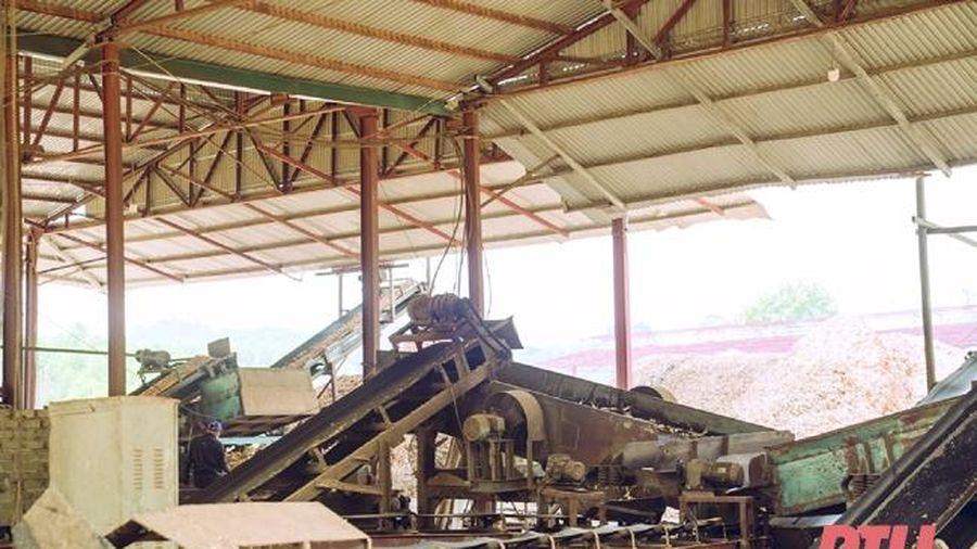 Kỹ sư Thanh Hóa sáng chế thành công máy sấy gỗ chân không hiệu suất lớn nhất Việt Nam