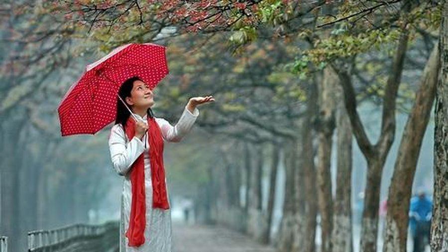 Thời tiết 2-3: Ảnh hưởng không khí lạnh tăng cường, miền Bắc tiếp tục có mưa, trời rét