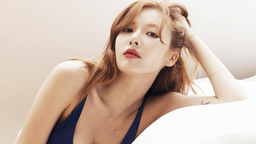 Showbiz Hàn chao đảo vì loạt scandal đầu năm 2021