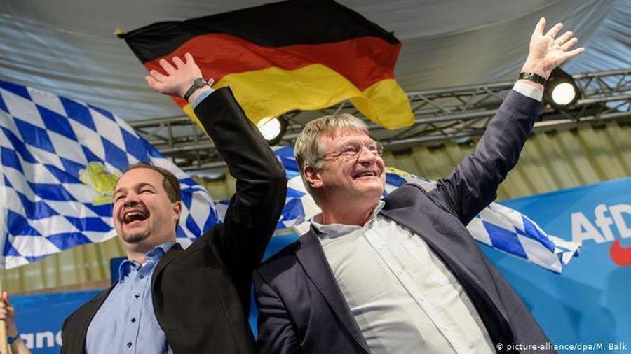 Đức xếp đảng AfD vào diện cần theo dõi để bảo vệ Hiến pháp