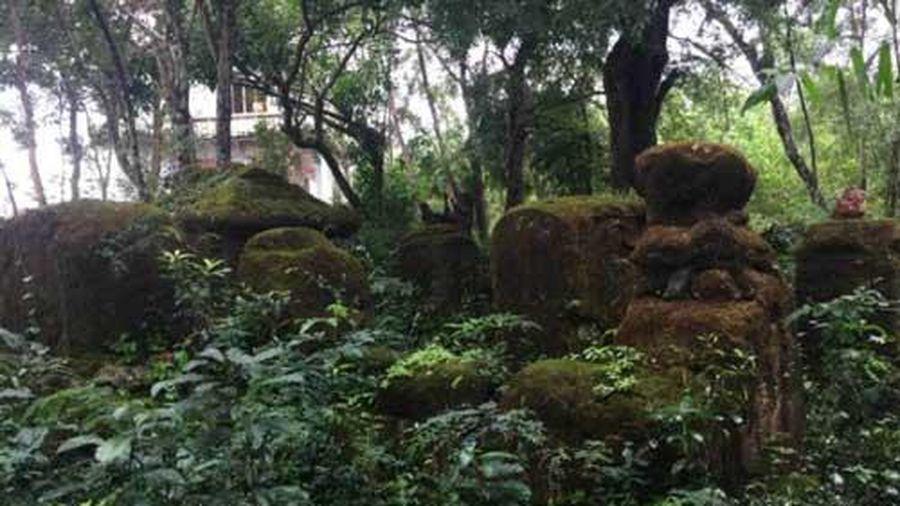 Kỳ bí hàng trăm ngôi mộ cổ trên núi A Mang, Phú Yên