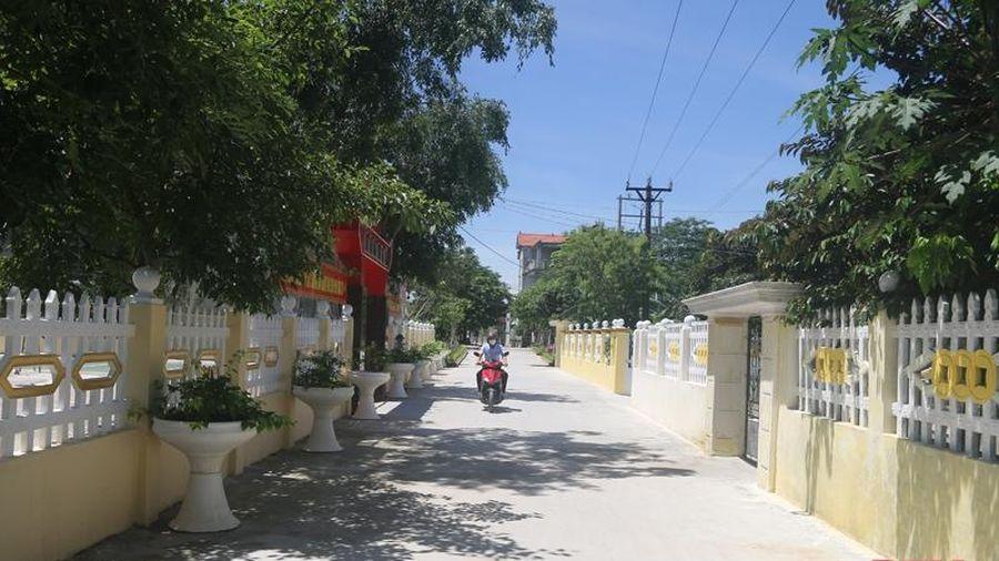 Huyện Đông Sơn: 21 thôn được công nhận thôn đạt chuẩn nông thôn mới kiểu mẫu