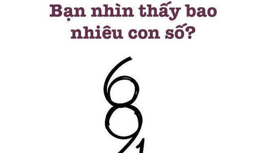 Đố vui: Bạn nhìn thấy bao nhiêu con số?