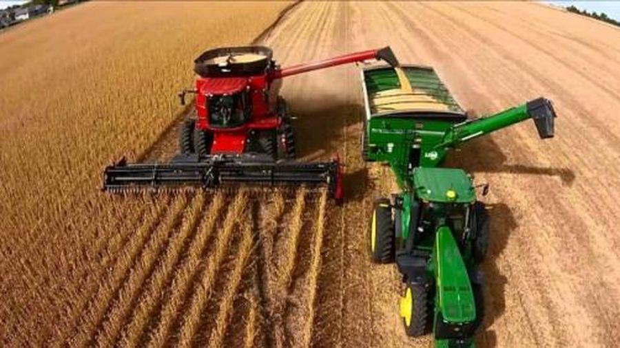 Hoa Kỳ mất dần vị thế thống trị trên thị trường ngũ cốc toàn cầu