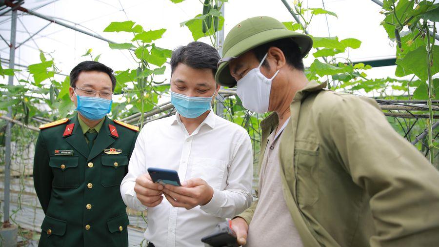 Ứng dụng chuyển đổi số của Viettel Post giúp 'giải cứu' nông sản Hải Dương