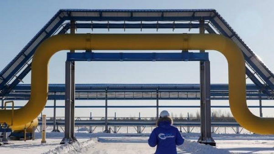Nga tăng cường cung cấp khí đốt cho Trung Quốc gấp 3 lần thông qua đường ống Power of Siberia