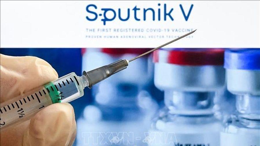 EU xem xét phê duyệt vaccine Sputnik V của Nga