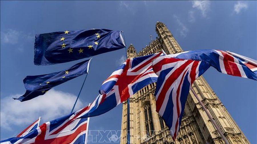 EU chỉ trích Anh cản trở việc xây dựng lòng tin