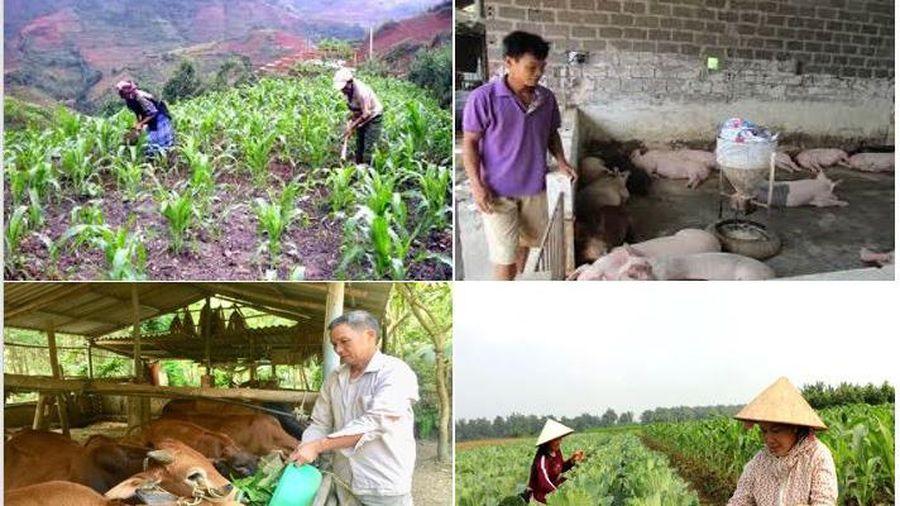 Yên Bái đặt mục tiêu giảm hơn 4.000 hộ nghèo trong năm 2021