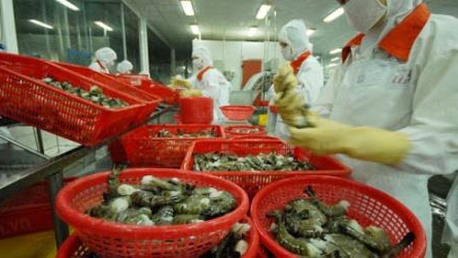 Số lượng DN xuất khẩu thủy sản sang EU tăng mạnh khi có EVFTA