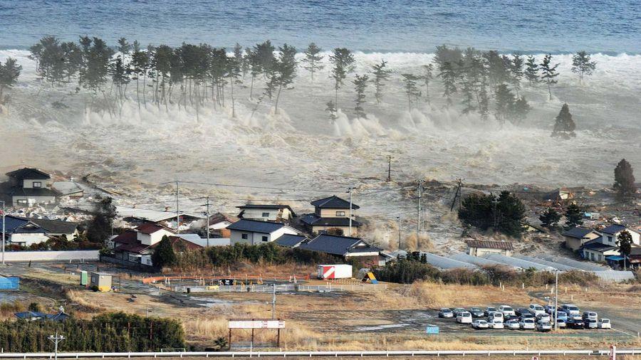 Tìm được hài cốt người mất tích trong trận sóng thần Nhật Bản năm 2011