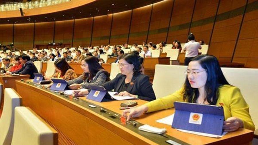 Phấn đấu nâng tỷ lệ lãnh đạo chủ chốt là nữ trong cơ quan nhà nước
