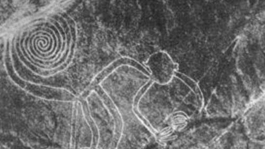 Phát hiện các hình vẽ kỳ bí của người Nazca cổ đại