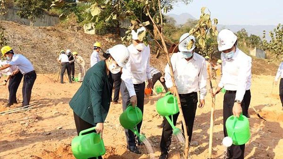 EVN đặt mục tiêu trồng 1 triệu cây xanh giai đoạn 2021-2025