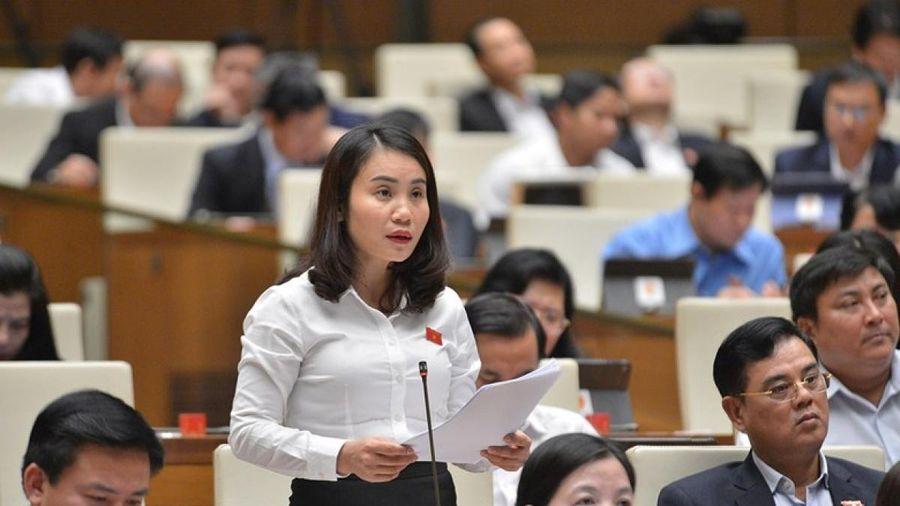 'Hệ thống pháp luật của Việt Nam liên tục được phát triển'