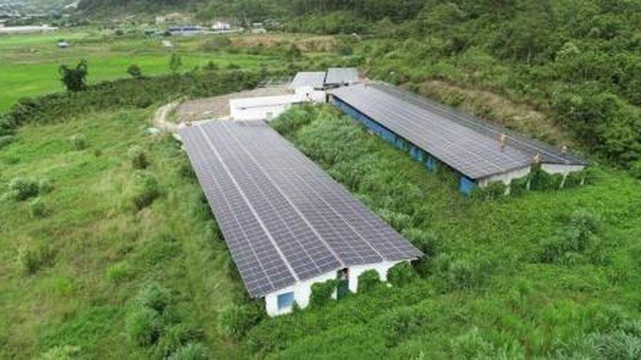 Lâm Đồng yêu cầu không phát triển ồ ạt điện mặt trời theo phong trào