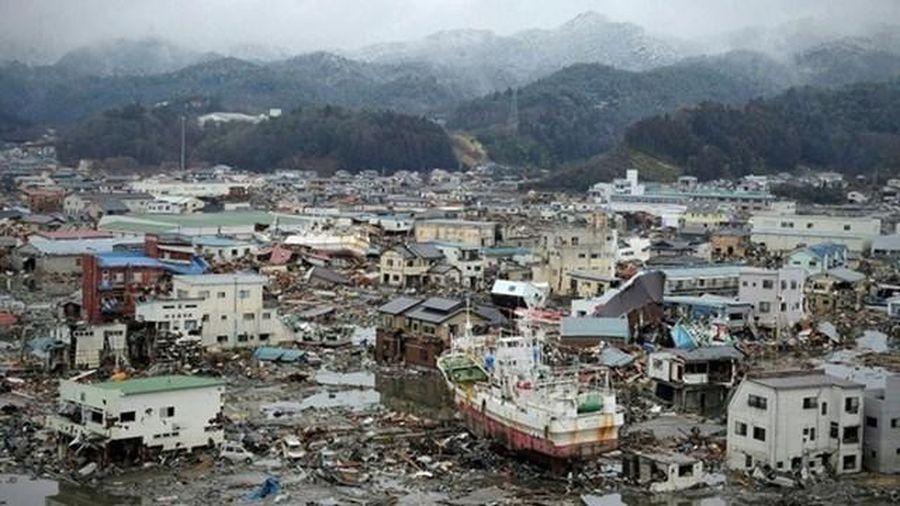 Tìm thấy hài cốt người mất tích trong sóng thần Nhật Bản