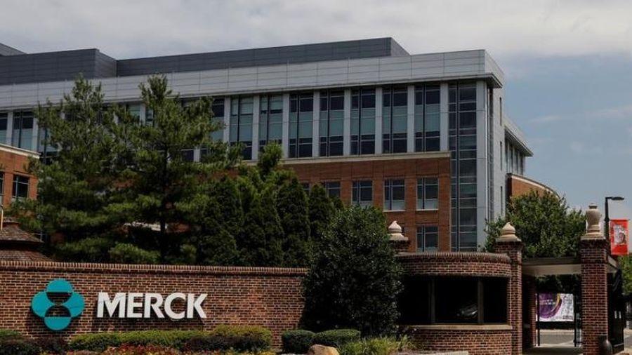 Thuốc chữa Covid-19 thử nghiệm của Merck làm giảm nhanh virus