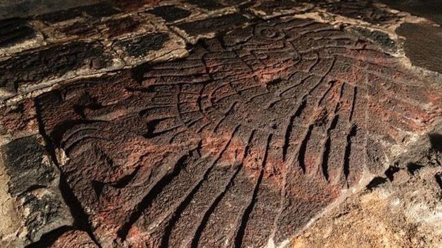 Bí ẩn về bức điêu khắc đại bàng trong ngôi đền ở Mexico