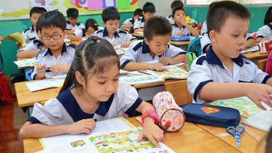 Đối với học sinh tiểu học, việc học ngoại ngữ nên là việc khuyến khích tự chọn hơn là ép buộc
