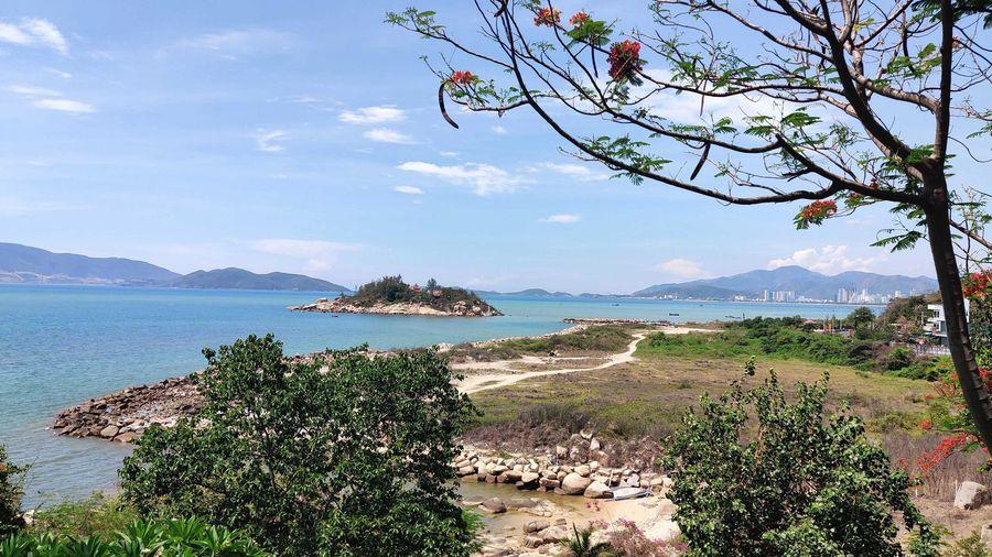 Khánh Hòa tiếp tục yêu cầu thu hồi dự án Nha Trang Sao
