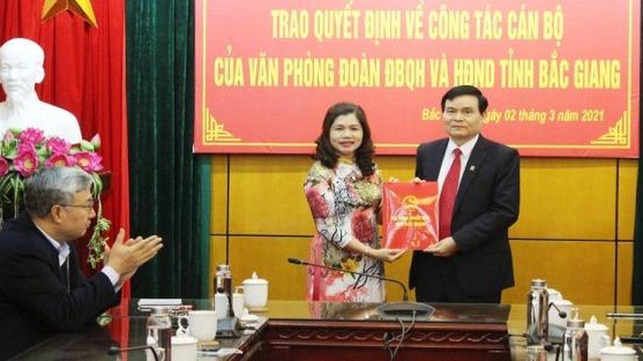 Bổ nhiệm nhiều lãnh đạo mới tại Bắc Ninh, Bắc Giang và Hậu Giang