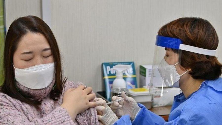 Hàn Quốc điều tra vụ 7 người chết sau khi tiêm vắc-xin ngừa Covid-19