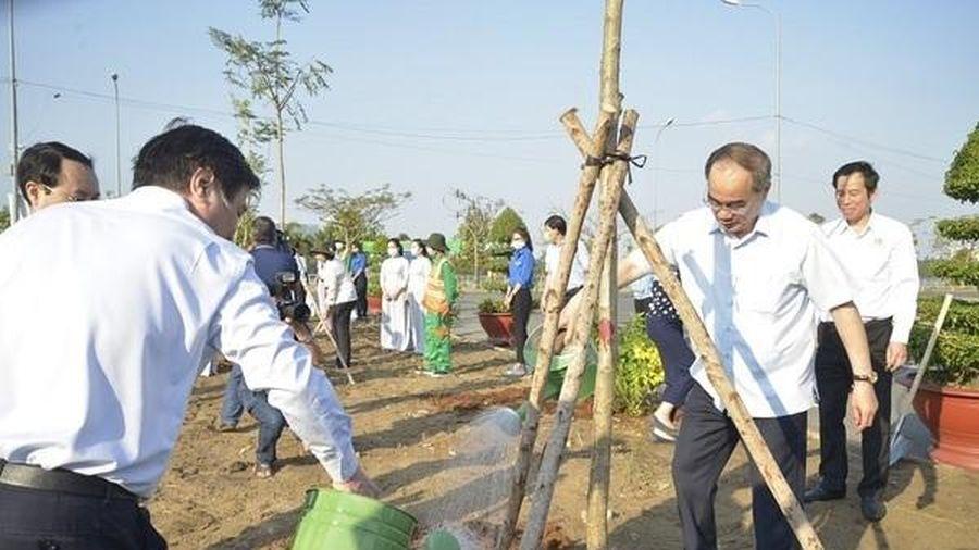 TP.HCM trồng nửa triệu cây xanh trong năm 2021