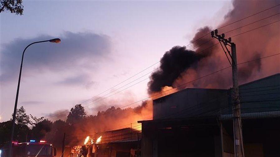 Bình Dương: Cháy lớn thiêu rụi năm kiốt và một nhà dân liền kề