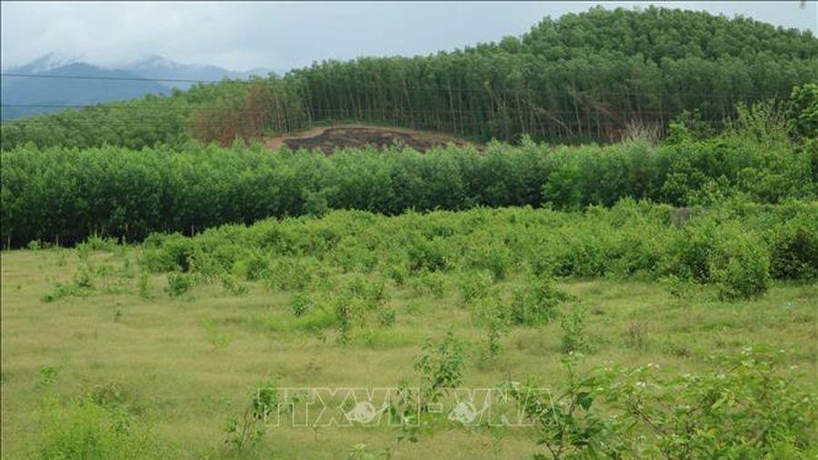 Đổi thay nơi vùng nông thôn mới miền núi đầu tiên của Khánh Hòa