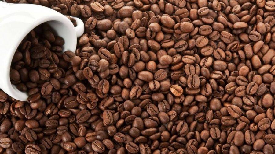 Giá cà phê hôm nay 7/3: Giữ ổn định, chờ lực tăng mới