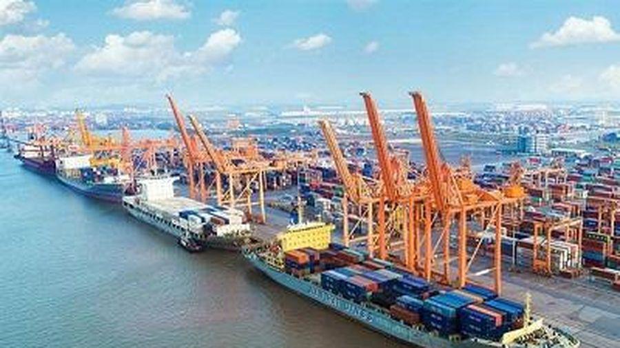 Phê duyệt chủ trương xây dựng 2 bến container thời gian hoạt động 70 năm