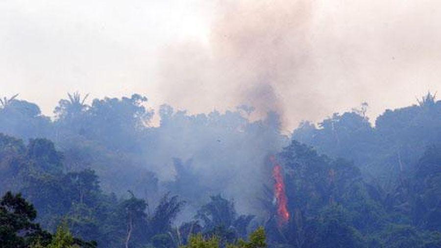 Khánh Vĩnh: Triển khai nhiệm vụ phòng cháy, chữa cháy rừng năm 2021