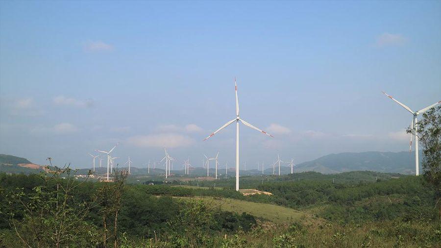 Quảng Trị hiện thực hóa mục tiêu trở thành trung tâm năng lượng sạch của miền Trung