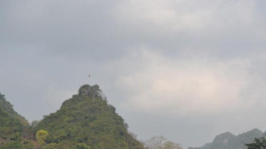 Hà Nội: Phố đi bộ, di tích chùa Hương sẵn sàng mở cửa trở lại
