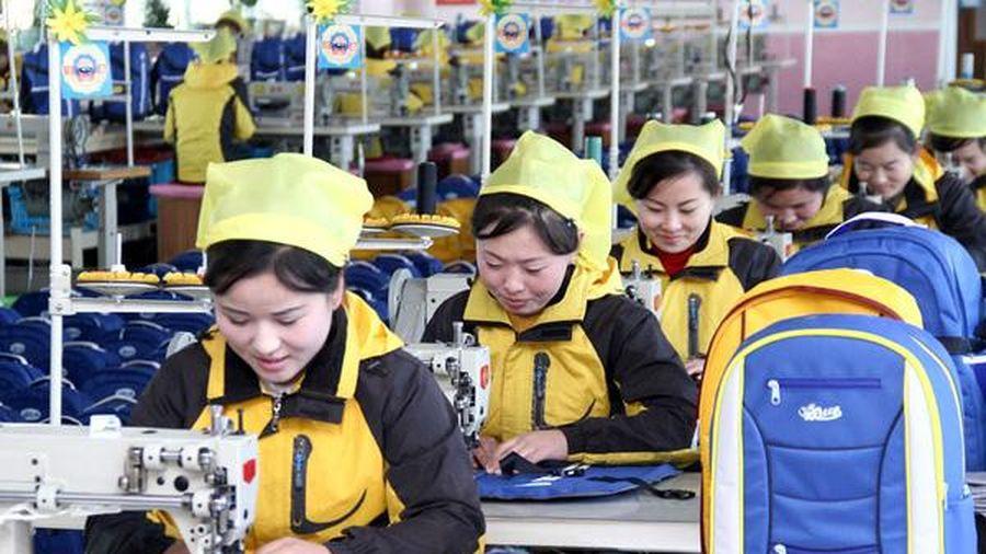 Phụ nữ Triều Tiên - những người cùng làm chủ đất nước