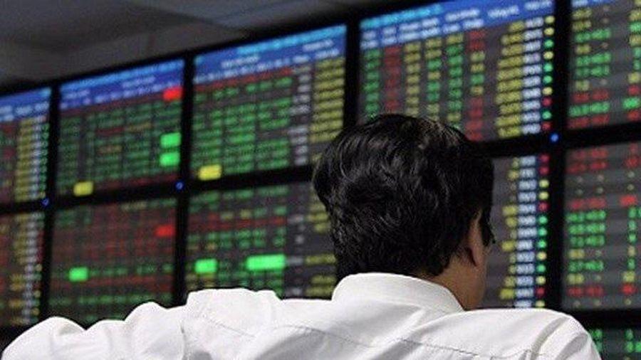 Cổ phiếu ngành dầu khí tăng 'ấn tượng'