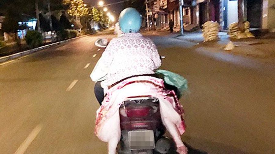 Xử lý nghiêm việc vận chuyển, buôn bán, giết mổ lợn nghi mắc bệnh, lợn bệnh, lợn chết